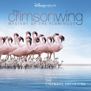 The Cinematic Orchestra with the London Metropolitan Orchestra – The Crimson Wing – Mystery of The Flamingoes (Disney)